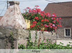 10-arbigny-1094