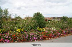 33-vescours-8478