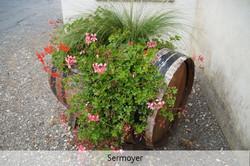 19-sermoyer-8910