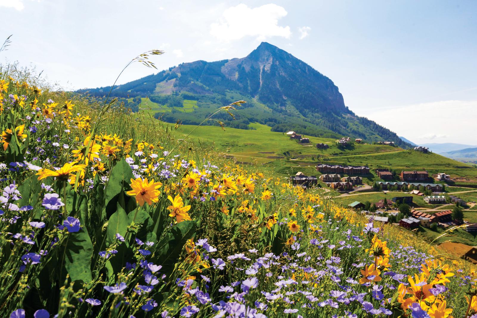 Verão em Crested Butte, Colorado