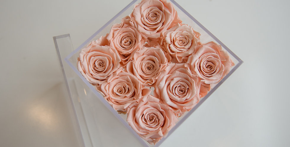 9  rose forever in acrylic box