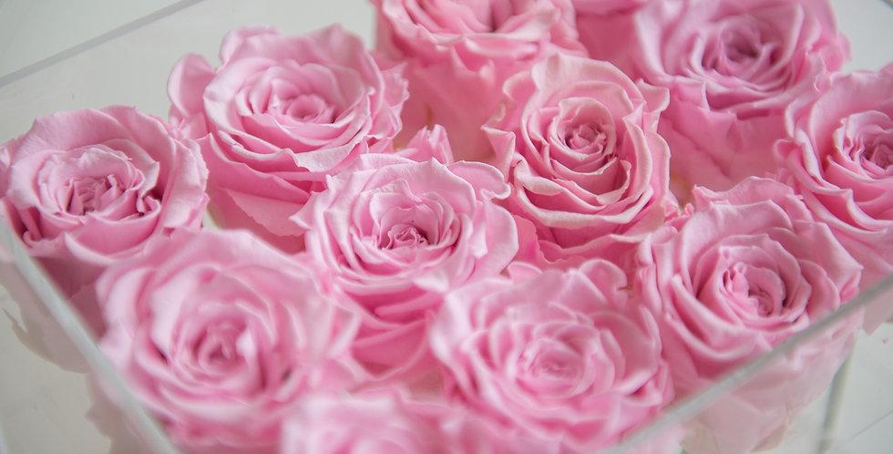 12 roses in acrylic box