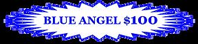 01FCMS BLUE ANGEL CLIP.PNG