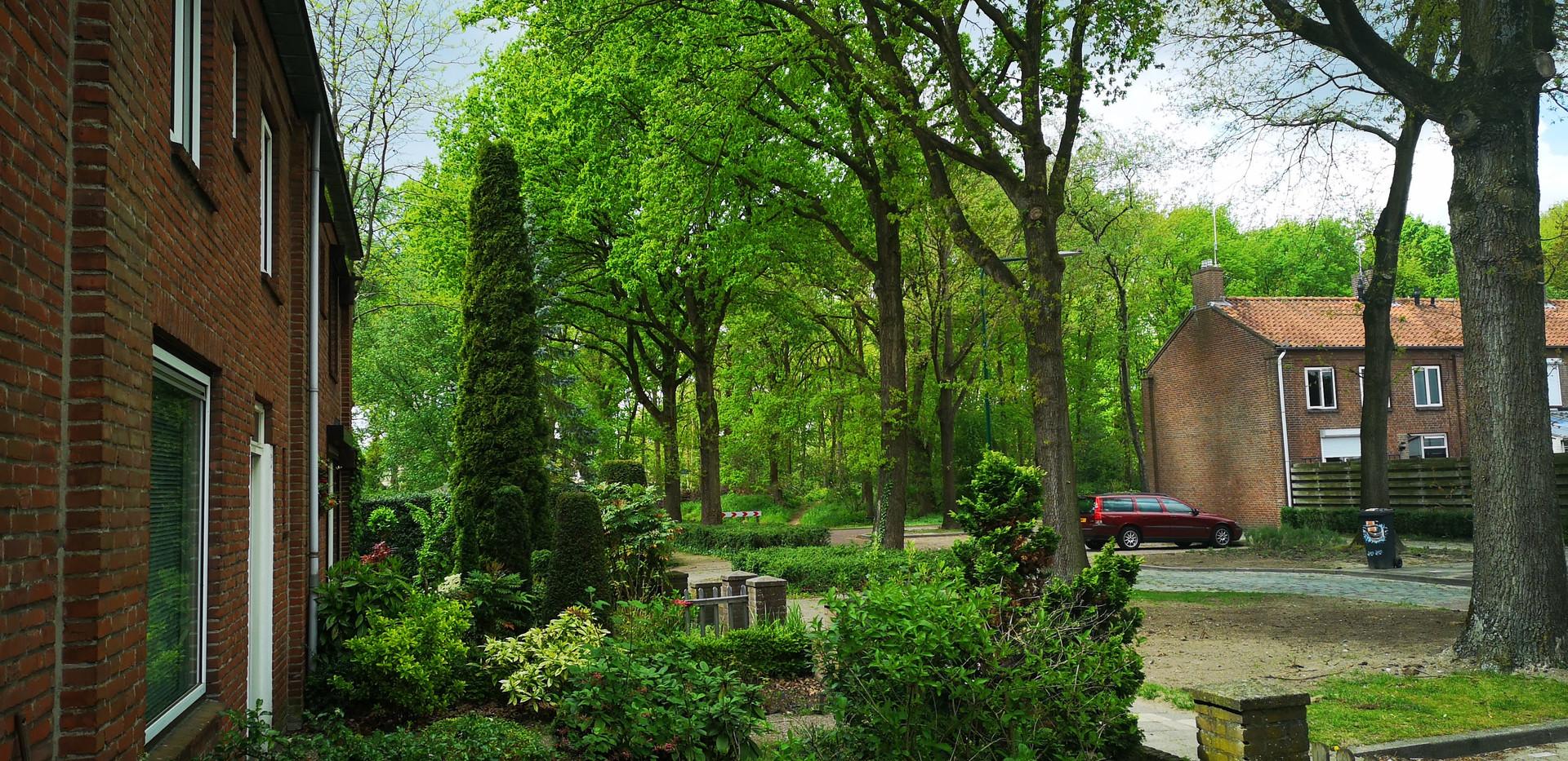 Karel Doormanstraat groen buurtje.jpg