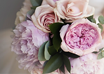 purple%20flowers_edited.png