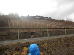 2012-02-22 Cochem_120
