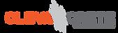 cleva-logo1.png