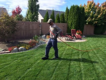 Lawn Ferilization.JPG