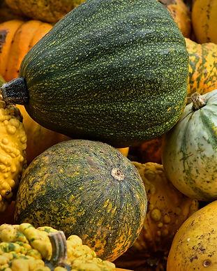 pumpkin-4517738_1920.jpg