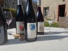 les jolis vins d'Anne Cécile Jadaud