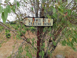 LA photo que tous ceux qui visitent Rayas prennent