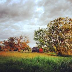 Eberle Farm