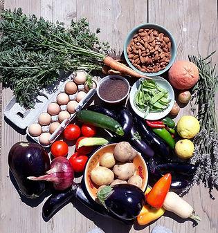 Fall crops photo by Jean Okuye.JPG