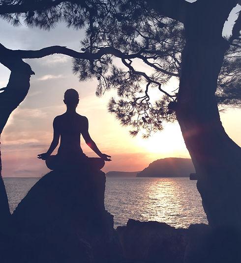 Wishing Wellness - Achieving Balance Within