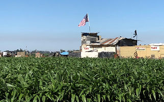 California family farms and ranches, sustainable agriculture, Resilience, Sustainability
