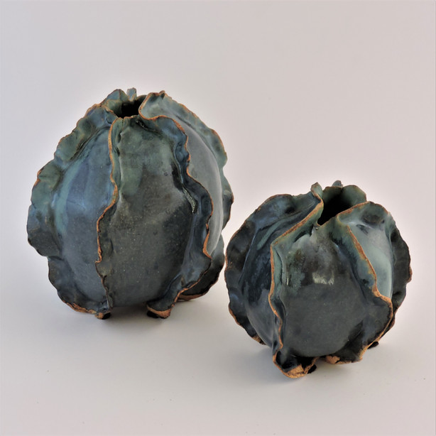 Blue pods