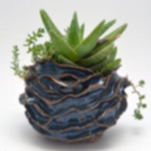 Blue-Organic-Pot5.png