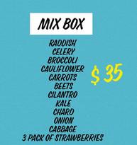 Mix%20Box_edited.jpg