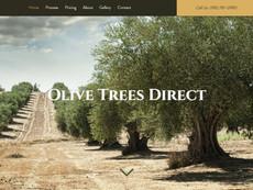 OliveTreeDirect