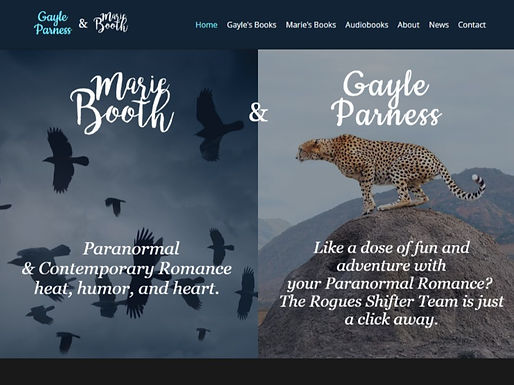 Gayle Parness & Marie Booth Books