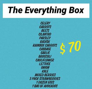 The%20Everything%20Box_edited.jpg