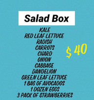 Salad%20Box_edited.jpg