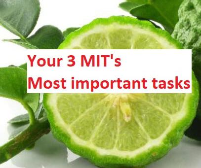 The 3 MIT's