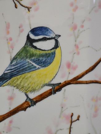 Detail of Blue Tits & Blossom