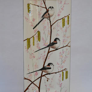 Longtailed Tits & Blossom