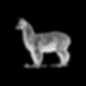 White Lama Logo_v01.png