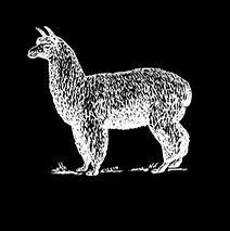 White Lama Logo_v01_edited.jpg