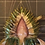 Thumbnail: 割引対象:ゲーテ的自然認識のなかの植物 8(全回)