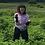 Thumbnail: 十勝タモレ(ドライハーブ) 8g