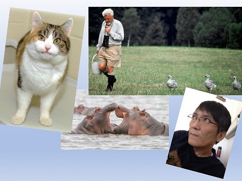 トトラボ大学「動物の行動から学ぶ〜新しい生活様式の方向性」on Zoom