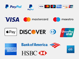 PAYMENTS IMAGE.png