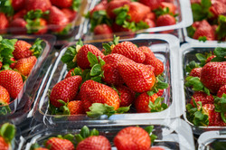 close-up-photography-of-strawberries-on-