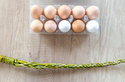 board-branches-eggs-handle-518538