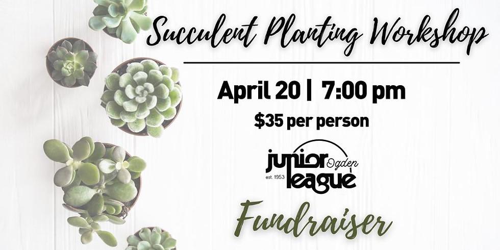 Succulent Planting Workshop