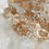 Thumbnail: 6109B (60x120 cm Bodenfliese)