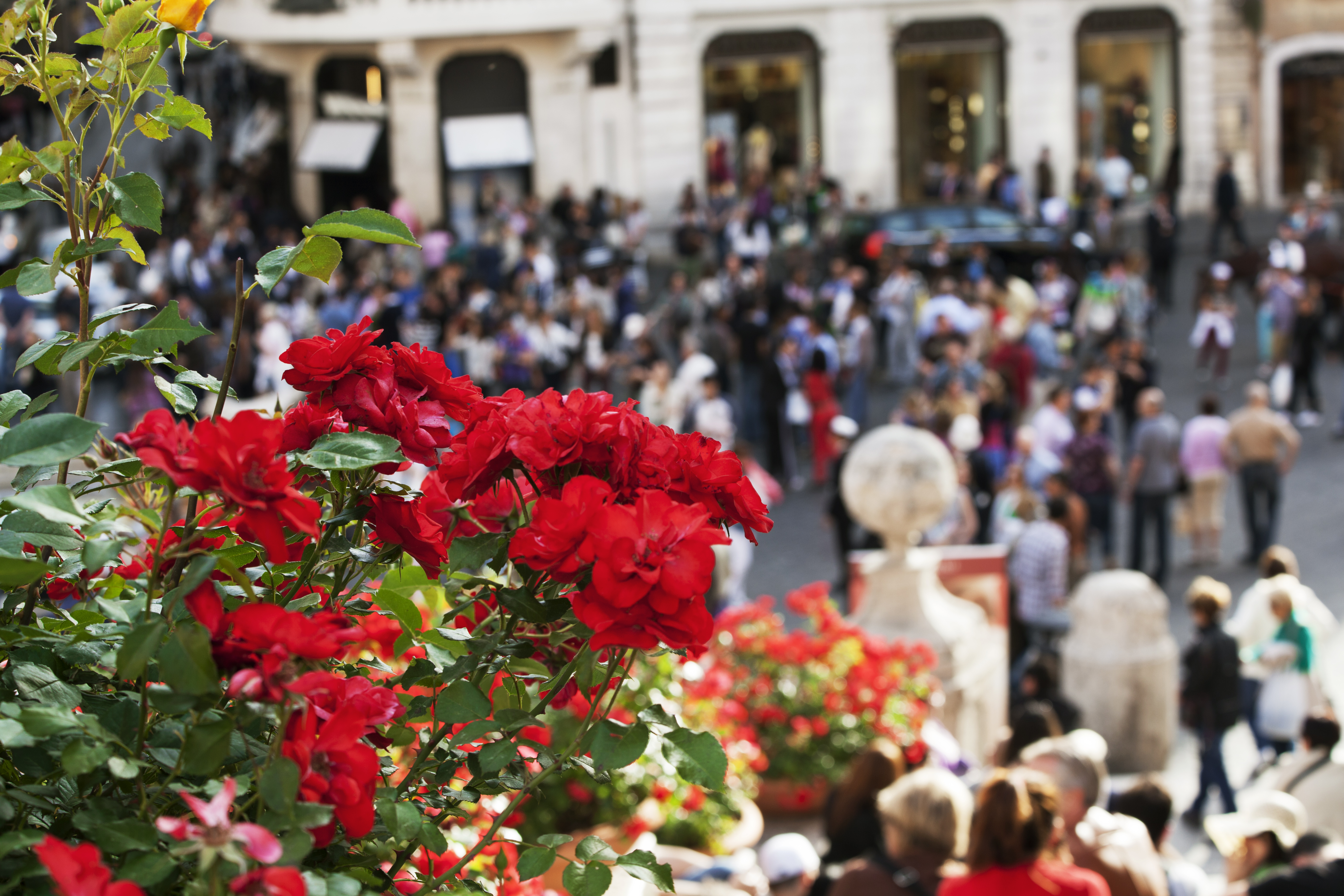 Roma Piazza di Spagna