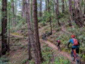 Mendo Trail.jpg
