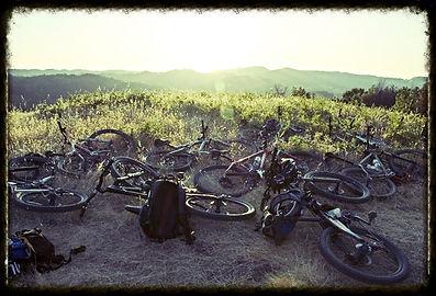 Northern California Craft Beer & Mountain Biking