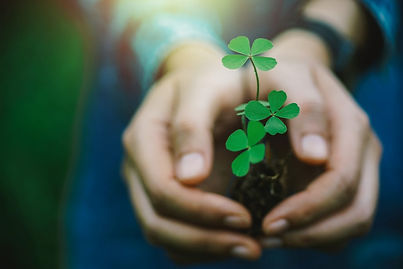Green-clover-leaf-in-hand.-1009867462_21