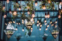 Secret garden Lights.jpeg