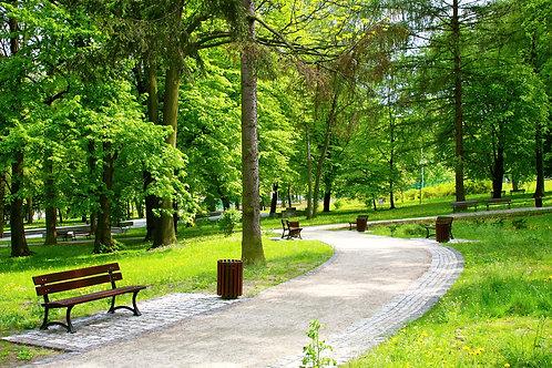 Красивый весенний парк