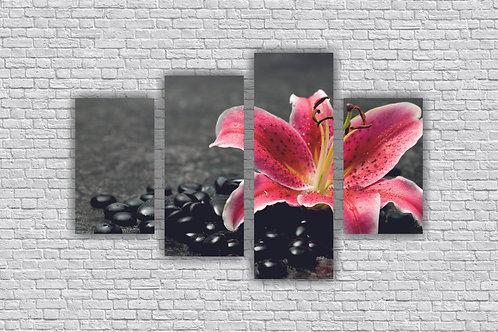 Цветок розовой лилии с черной галькой