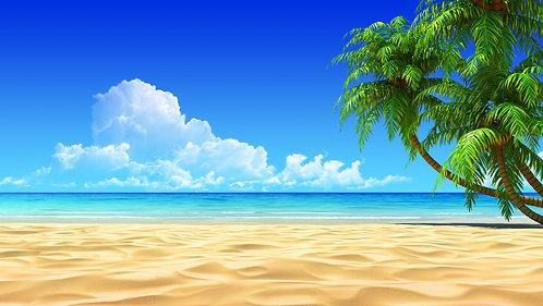 Пальмы на пустом побережье