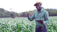 african-farmer-man-stand-green-farm.jpg