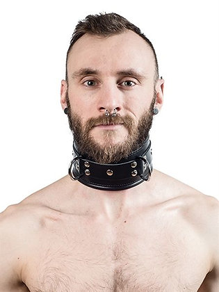 MrB Padded Leather Slave Collar