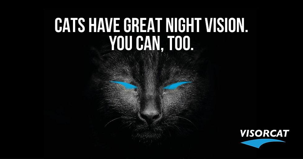 FACEBOOK THE CAT3.jpg